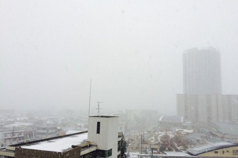 摂津市の景色1 雪