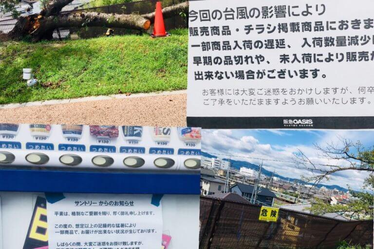 台風被害 影響
