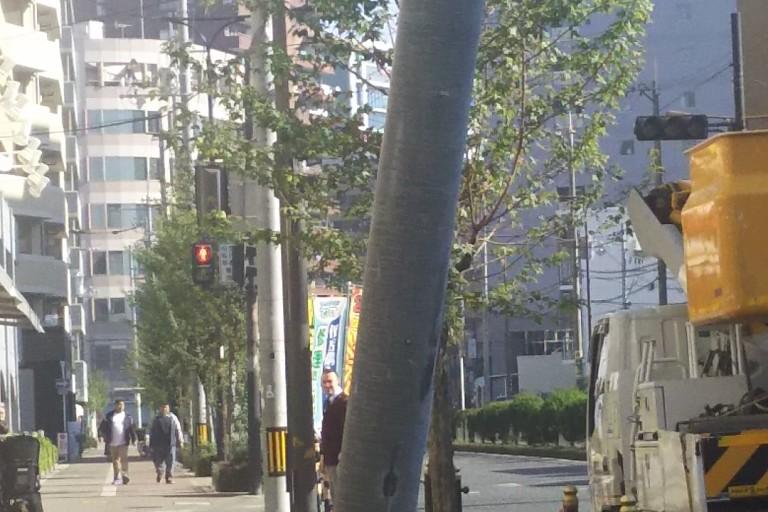 淀川通り 事故 折れた電柱