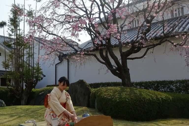 旧石橋家住宅の庭にてお茶を立てる生徒さん