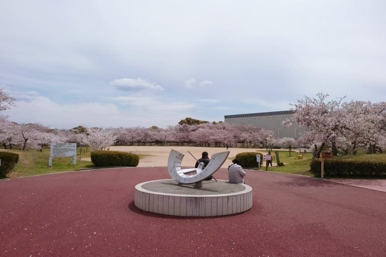 石ヶ谷公園の桜
