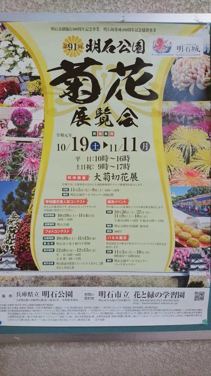 菊花展覧会
