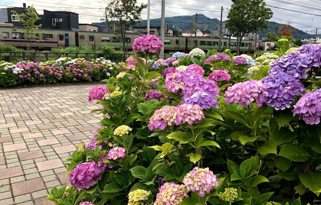 【札幌市手稲区】7月27日は稲積ふるさと祭り、8月5日は前田 ...