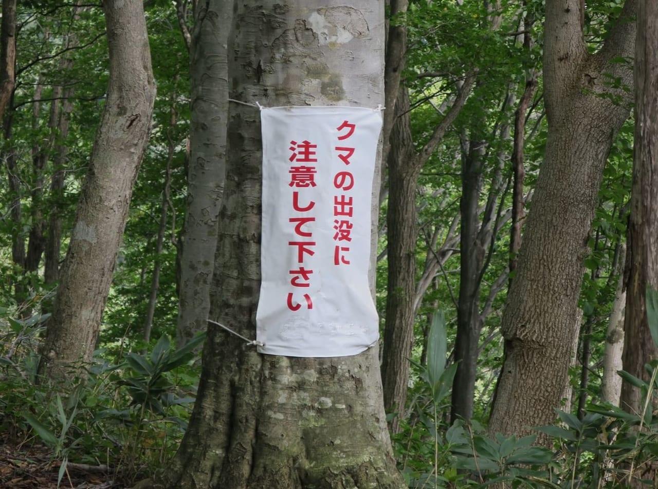 【札幌市西区】2日連続で熊の出没情報!引き続き警戒が必要 ...